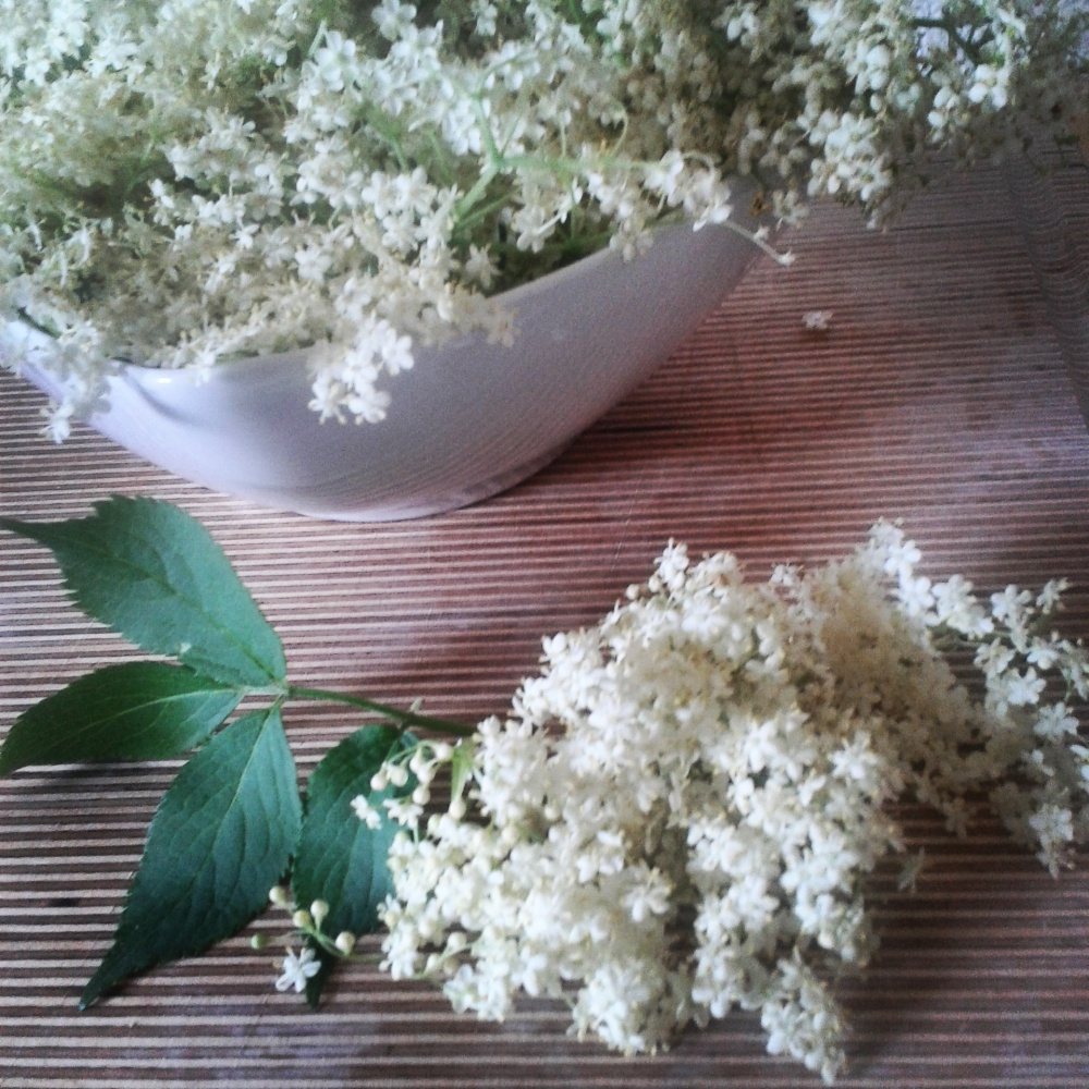 Nothing says summer like Elder flower blossoms